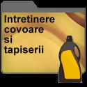 Intretinerea covoarelor si tapiteriilor